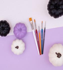 Snazaroo Halloween Pro Brushes selection