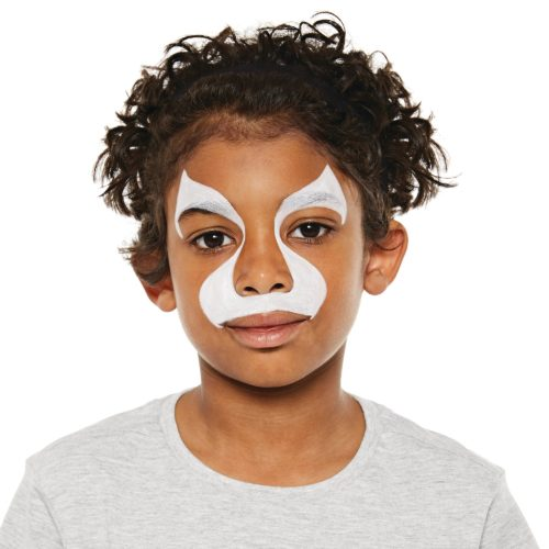 Boy with step 1 of Lion face paint design